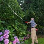 Hedgecutter Long Lifestyle