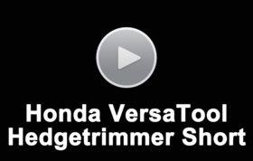 Hedgetrimmer Short